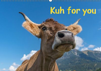 Kuh for you (Wandkalender 2019 DIN A2 quer), Miriam Kaina