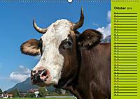 Kuh for you (Wandkalender 2019 DIN A2 quer) - Produktdetailbild 10