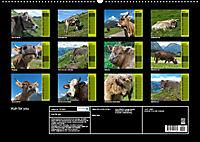Kuh for you (Wandkalender 2019 DIN A2 quer) - Produktdetailbild 13