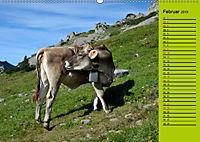 Kuh for you (Wandkalender 2019 DIN A2 quer) - Produktdetailbild 2