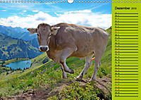 Kuh for you (Wandkalender 2019 DIN A3 quer) - Produktdetailbild 12