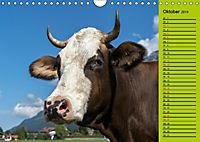 Kuh for you (Wandkalender 2019 DIN A4 quer) - Produktdetailbild 10