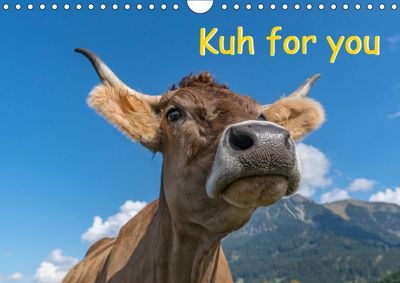 Kuh for you (Wandkalender 2019 DIN A4 quer), Miriam Kaina