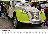 Kulturgut Ente (Wandkalender 2019 DIN A3 quer) - Produktdetailbild 9