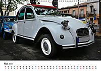 Kulturgut Ente (Wandkalender 2019 DIN A3 quer) - Produktdetailbild 5