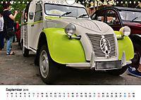 Kulturgut Ente (Wandkalender 2019 DIN A4 quer) - Produktdetailbild 9