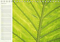 Kunst der Natur (Tischkalender 2019 DIN A5 quer) - Produktdetailbild 6