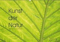 Kunst der Natur (Wandkalender 2019 DIN A2 quer), Sandra Eigenheer