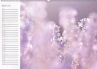 Kunst der Natur (Wandkalender 2019 DIN A2 quer) - Produktdetailbild 6