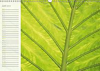 Kunst der Natur (Wandkalender 2019 DIN A3 quer) - Produktdetailbild 6