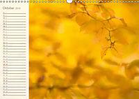 Kunst der Natur (Wandkalender 2019 DIN A3 quer) - Produktdetailbild 10