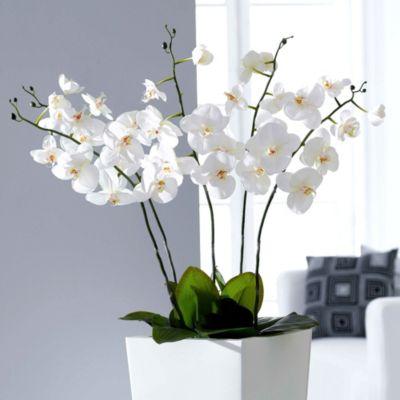 Kunstpflanze Orchidee, weiß