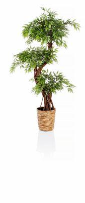 Kunstpflanze Ruscus