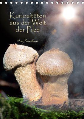 Kuriositäten aus der Welt der Pilze (Tischkalender 2019 DIN A5 hoch), Heinz Schmidbauer
