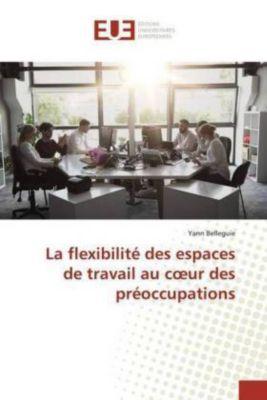 La flexibilité des espaces de travail au coeur des préoccupations, Yann Belleguie