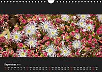 La Gomera - Canarian Natural Paradise (Wall Calendar 2019 DIN A4 Landscape) - Produktdetailbild 9