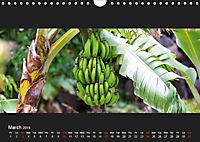 La Gomera - Canarian Natural Paradise (Wall Calendar 2019 DIN A4 Landscape) - Produktdetailbild 3