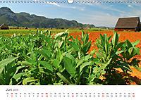 La Isla Kuba (Wandkalender 2019 DIN A3 quer) - Produktdetailbild 6
