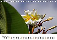 La Réunion - Auf der Insel der Gefühle (Tischkalender 2019 DIN A5 quer) - Produktdetailbild 1