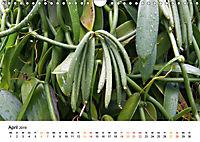 La Réunion - Auf der Insel der Gefühle (Wandkalender 2019 DIN A4 quer) - Produktdetailbild 4