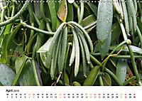La Réunion - Auf der Insel der Gefühle (Wandkalender 2019 DIN A3 quer) - Produktdetailbild 4