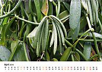 La Réunion - Auf der Insel der Gefühle (Wandkalender 2019 DIN A2 quer) - Produktdetailbild 4