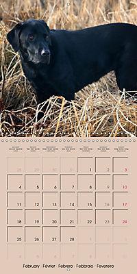 Labrador Retriever - Dogs with Personality (Wall Calendar 2019 300 × 300 mm Square) - Produktdetailbild 2