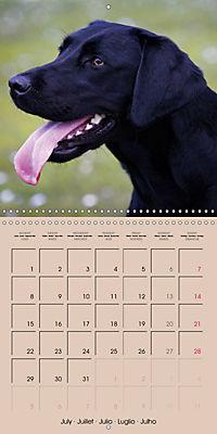 Labrador Retriever - Dogs with Personality (Wall Calendar 2019 300 × 300 mm Square) - Produktdetailbild 7
