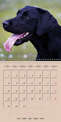 Labrador Retriever - Dogs with Personality (Wall Calendar 2019 300 × 300 mm Square) - Produktdetailbild 7