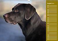 Labrador Retriever - Faithful Companions (Wall Calendar 2019 DIN A3 Landscape) - Produktdetailbild 8