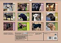 Labrador Retriever - Faithful Companions (Wall Calendar 2019 DIN A3 Landscape) - Produktdetailbild 13