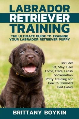 Labrador Retriever Training: The Ultimate Guide to Training Your Labrador Retriever Puppy: Includes Sit, Stay, Heel, Come, Crate, Leash, Socialization, Potty Training and How to Eliminate Bad Habits, Brittany Boykin