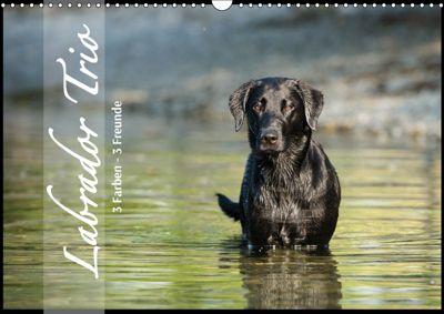 Labrador Trio - 3 Farben, 3 Freunde (Wandkalender 2019 DIN A3 quer), Cornelia Strunz