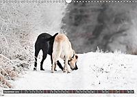 Labrador Trio - 3 Farben, 3 Freunde (Wandkalender 2019 DIN A3 quer) - Produktdetailbild 12