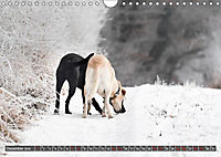 Labrador Trio - 3 Farben, 3 Freunde (Wandkalender 2019 DIN A4 quer) - Produktdetailbild 12