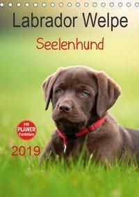 Labrador Welpe - Seelenhund (Tischkalender 2019 DIN A5 hoch), Petra Schiller