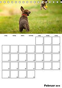 Labrador Welpe - Seelenhund (Tischkalender 2019 DIN A5 hoch) - Produktdetailbild 2
