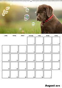 Labrador Welpe - Seelenhund (Wandkalender 2019 DIN A2 hoch) - Produktdetailbild 8