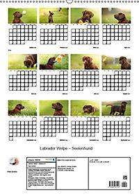 Labrador Welpe - Seelenhund (Wandkalender 2019 DIN A2 hoch) - Produktdetailbild 13