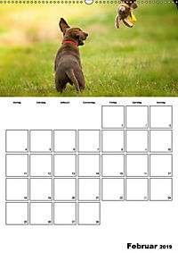 Labrador Welpe - Seelenhund (Wandkalender 2019 DIN A2 hoch) - Produktdetailbild 2