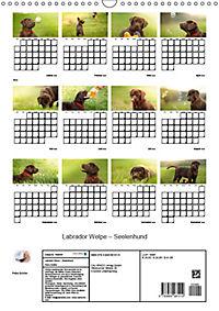 Labrador Welpe - Seelenhund (Wandkalender 2019 DIN A3 hoch) - Produktdetailbild 13