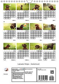 Labrador Welpe - Seelenhund (Wandkalender 2019 DIN A4 hoch) - Produktdetailbild 13
