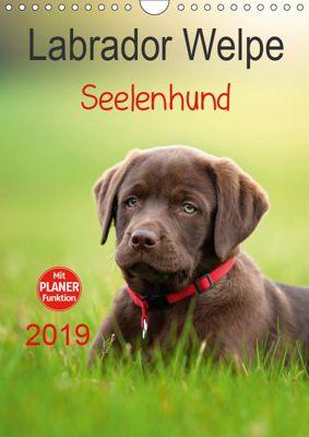 Labrador Welpe - Seelenhund (Wandkalender 2019 DIN A4 hoch), Petra Schiller