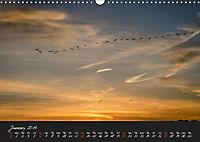 Lac du Der Lake Der (Wall Calendar 2019 DIN A3 Landscape) - Produktdetailbild 1