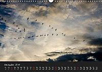 Lac du Der Lake Der (Wall Calendar 2019 DIN A3 Landscape) - Produktdetailbild 11