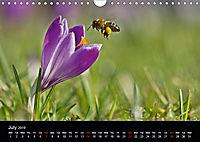 Ladybirds and Bees of the UK (Wall Calendar 2019 DIN A4 Landscape) - Produktdetailbild 7
