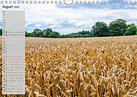 Laichingen - Schwäbische Alb Planer (Wandkalender 2019 DIN A4 quer) - Produktdetailbild 8