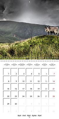 LAKE DISTRICT CUMBRIA Dramatic Art Photos (Wall Calendar 2019 300 × 300 mm Square) - Produktdetailbild 4