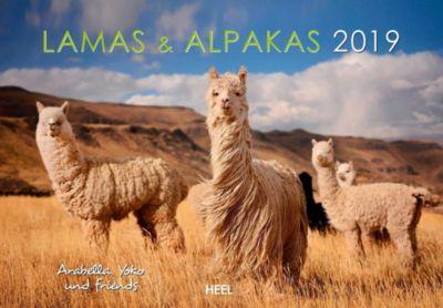 Lamas & Alpakas 2019