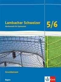 11 Lambacher Schweizer Grundwissen und 12 Bayern Schuljahr